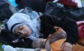 Turkey-Syrian-refugees-sleeping-rough-Tem-motorway-Istabul-to-go-to-Edrine-bordering-Greec-Bulgaria-21-9-15-Ph-Isa-Terli-AA-1-513×239